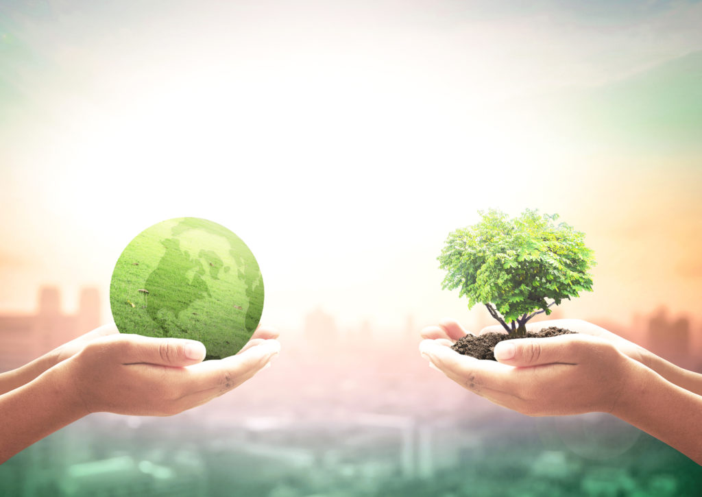 Responsible Investing Will Be Replaced by 'Investing With No Prefixes' | DIY Investor Resources